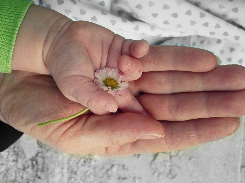 hands-105455_1920