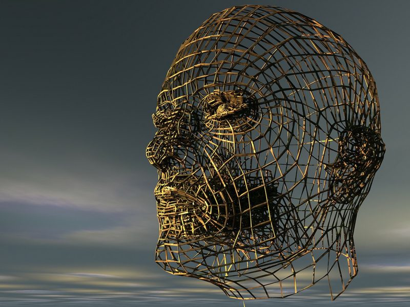 head-196541_1920